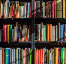 shelves with library books